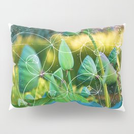 Growth Potential Pillow Sham