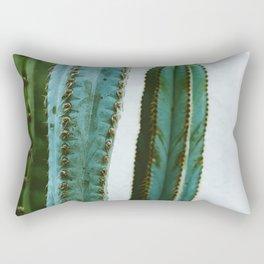California Cactus Garden II Rectangular Pillow