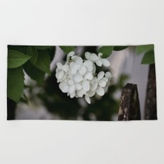 Hydrangea and Old Country Fence Beach Towel