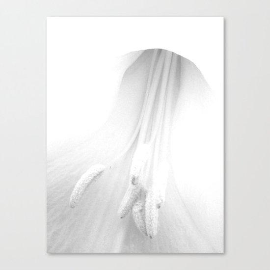 untitled white Canvas Print