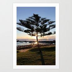 Pine Tree Art Print