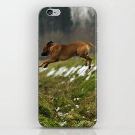 Super Dog iPhone Skin