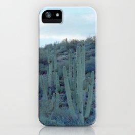 evening cactus iPhone Case