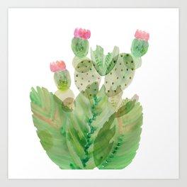 Flowering Cactus II Art Print