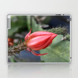 Beautiful Cactus Bud Laptop & iPad Skin