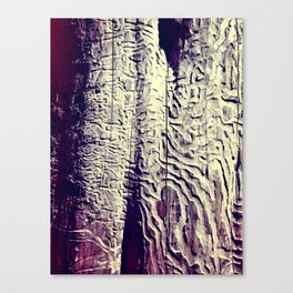 Lost in the Mze Canvas Print