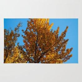 Late Fall Colour Rug