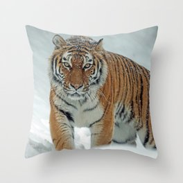 Siberian Tiger in the Snow Throw Pillow