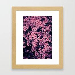 Many pink flowers Framed Art Print