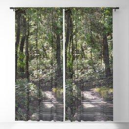 across a wooden bridge Blackout Curtain