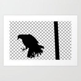 Pigeon's Cage Art Print