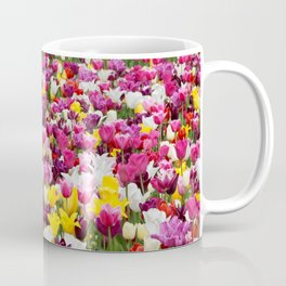 Collection of different tulips in Holland Coffee Mug