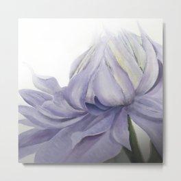 Mauve Clematis Flower Metal Print