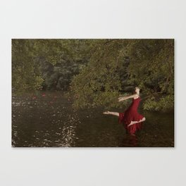 red swan Canvas Print
