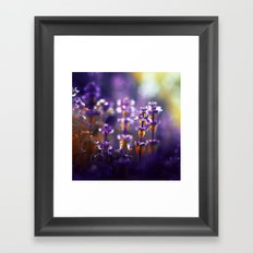 Over the Gold and Hills Framed Art Print