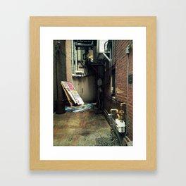 Harrisburg Alley Framed Art Print