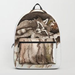 Sleeping Raccoon in Tree Hollow Backpack