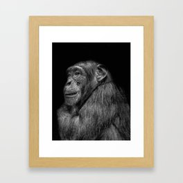 The Wise Chimp Framed Art Print