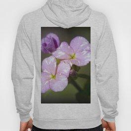 Pink Wildflowers Hoody