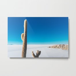 Cactus on Isla Incahuasi, Salt Flats, Bolivia Metal Print