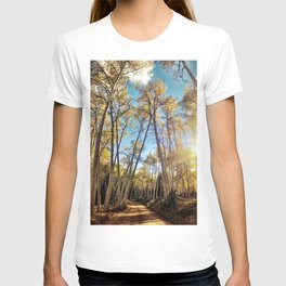 : aspens a glow : T-shirt