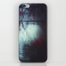 Secret WoodLands iPhone & iPod Skin