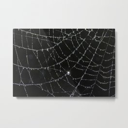 web of dew Metal Print