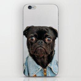 Pug Got Style iPhone Skin