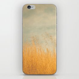 Amber Wave -- Tall Golden Grass in a Blue Ridge Highlands Pasture iPhone Skin