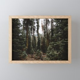 You Can Find Me in the Forest Framed Mini Art Print