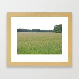 Peaceful Wheat Framed Art Print