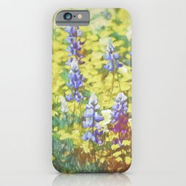 Colors 164 iPhone Case