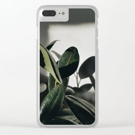 Rubber Tree in Sunlight Clear iPhone Case
