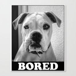 Bored Dog Canvas Print