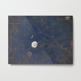 L'Escargot Metal Print