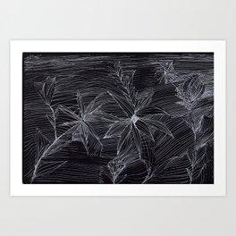 flower on black Art Print