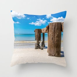 Gnawed Throw Pillow