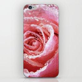 Pink Rose Dewdrops Floral Vector Art iPhone Skin