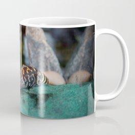 Baby Alligator Eating Coffee Mug