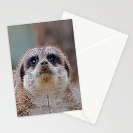 Been Digging Stationery Cards