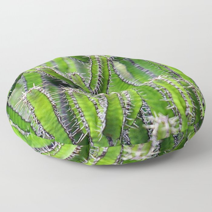 Cactus 1 Floor Pillow