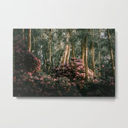 Spring at Holme Fen Metal Print