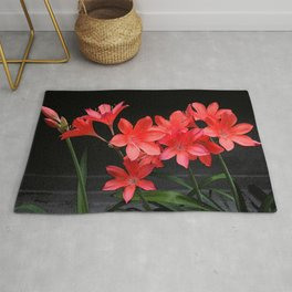 red lili Rug