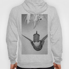 Hummingbird (Black and White) Hoody