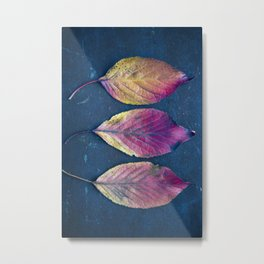 Three Autumn Leaves Metal Print