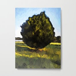 Tree of Green in the Morning Sun Metal Print