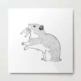 Mother Hamster Carrying Her Baby Metal Print