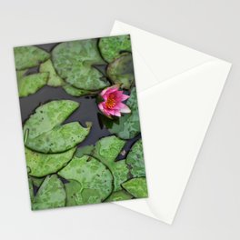 Afloat Lily Pad Nature Photograph Stationery Cards