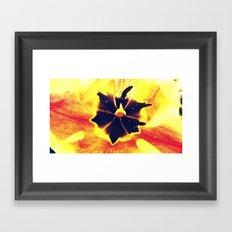 Pollen Abounds Framed Art Print