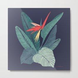 Bird Of Paradise Flower | Strelitzia Illustration Metal Print